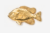 #111G - Sunfish 24K Gold Plated Pin