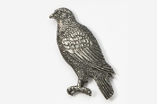 #367 - Hawk Antiqued Pewter Pin