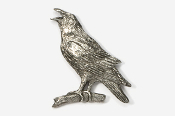 #377 - Crow / Raven Antiqued Pewter Pin