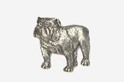 #463A - Bulldog Antiqued Pewter Pin