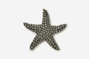 #539 - Starfish Antiqued Pewter Pin