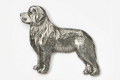 #871 - Newfoundland Antiqued Pewter Pin