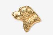 #450BG - Labrador Retriever Head 24K Gold Plated Pin