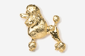 #461AG - Show Clip Poodle 24K Gold Plated Pin