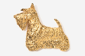 #461BG - Scotty 24K Gold Plated Pin