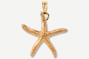 #P539AG - Sugar Star 24K Gold Plated Pendant