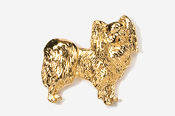 #881G - Papillon 24K Gold Plated Pin