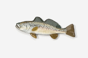 #211P - Weakfish Hand Painted Pin