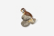 #306P - Bobwhite Quail Hand Painted Pin