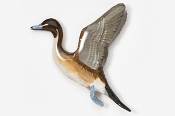 #323P - Flying Pintail Hand Painted Pin