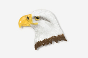 #330P - Eagle Head Hand Painted Pin
