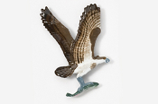 #366P - Osprey Hand Painted Pin