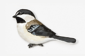 #371P - Chickadee Hand Painted Pin