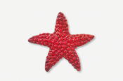 #539BP - Medium Starfish Hand Painted Pin