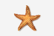 #539P - Starfish Hand Painted Pin