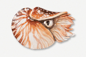 #549AP - Swimming Nautilus Hand Painted Pin