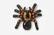 #565P - Tarantula Hand Painted Pin