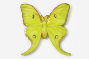 #571P - Luna Moth Hand Painted Pin