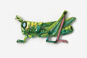 #577P - Grasshopper Hand Painted Pin