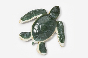 #607P - Sea Turtle Hand Painted Pin