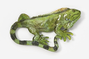 #615P - Iguana Hand Painted Pin