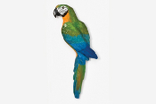 #354P-C - Catalina Macaw Hand Painted Pin