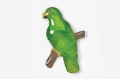 #357P-ME - Male Eclectus Parrot Hand Painted Pin