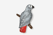 #358P-AG - African Grey Parrot Hand Painted Pin