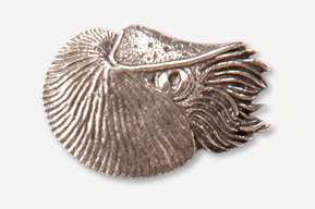 #549A - Swimming Nautilus Antiqued Pewter Pin