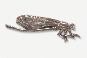 #569A - Damselfly Antiqued Pewter Pin